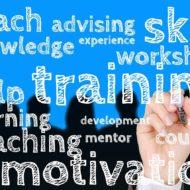 Imagem - Treinamento e Desenvolvimento
