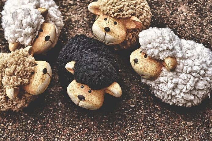 ovelha-negra - ser diferente
